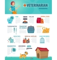 Colorful Vet Infographic Concept vector image vector image