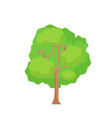 flat tree with isolated white background cartoon vector image vector image