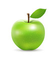 green apple fresh and green leaf design isolated vector image vector image