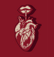 hand drawn of human heart with lips and straw vector image vector image