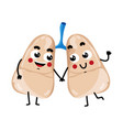 human lungs cute cartoon character vector image vector image