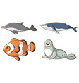 isolated picture sea animals vector image vector image