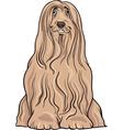 bearded collie dog cartoon vector image