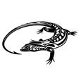 Black iguana lizard vector image vector image