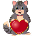 gray kitten on a white background vector image vector image