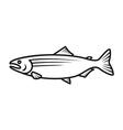 Salmon logo vector image