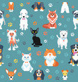 seamless pattern with cats and dogs flat design vector image