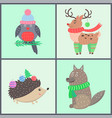 animal collection of posters vector image vector image