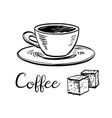 cup of coffee and sugar cubes vector image