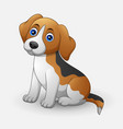 cute dog sitting isolated on white background vector image
