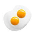 egg with two yolks in vector image