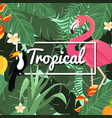 tropical flowers background summer design vector image vector image