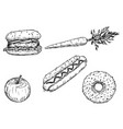 cartoon drawing of set of vegetable fruit and vector image
