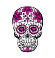 day dead skull sketch vector image vector image