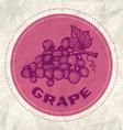 grape vintage paper vector image