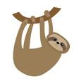 sloth hanging on tree branch icon cute cartoon vector image