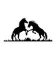 stallions fighting horses wildlife stencils