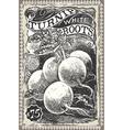 Vintage Greengrocer - Turnip Advertising vector image
