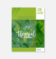brochure template tropical palms summer graphic vector image vector image