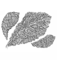 Croton leaf in paisley style vector image vector image