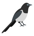garden magpie icon flat style vector image vector image