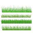 green grass and plant elements vector image vector image