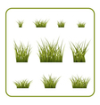 Green grass bushes set isolated vector image vector image