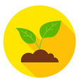Growing Plant with Ground Circle Icon vector image