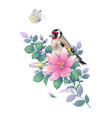 hand drawn goldfinch sitting on pink flower vector image vector image
