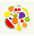 Juicy ripe fruit and berry set Banana cherry vector image