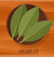 malabar cassia leaf flat design icon vector image vector image