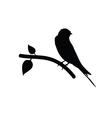 sparrow black vector image