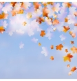 Autumn leaves with the blue sky EPS 10 vector image
