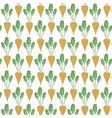 background pattern with sugar beet vector image vector image