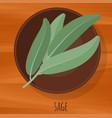 sage flat design icon vector image vector image