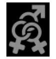white halftone double mistress icon vector image vector image