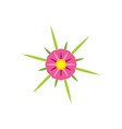 abstract flower star logo icon design vector image vector image