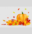 autumn background thanksgiving banner with vector image