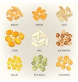 Bean and grains of seasonal plant seed icons vector image vector image