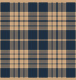 blue and beige tartan plaid seamless pattern vector image vector image