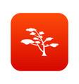 cedar icon digital red vector image vector image