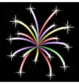 Colorful Light Firework vector image