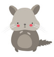 cute hamster on white background vector image vector image