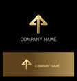 gold arrow up logo vector image
