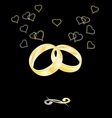 Gold wedding rings on a black background vector image