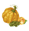 harvest season decorative element with pumpkin vector image