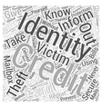 identity theft protection information Word Cloud vector image vector image