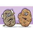 old potatoes cartoon vector image vector image