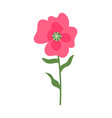 pink flower on thin stable flora decoration icon vector image vector image