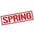 spring stamp vector image vector image
